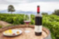 Etna wine.jpg