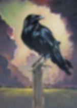 Raven 5 x 7.jpg