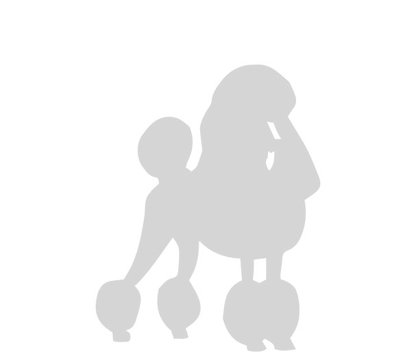 poodle vector OPPOSITE.png