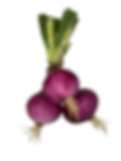 Red onion bunch.png