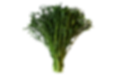 finesse kale crop.png