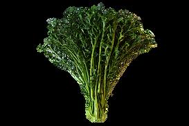 finesse kale crop.png