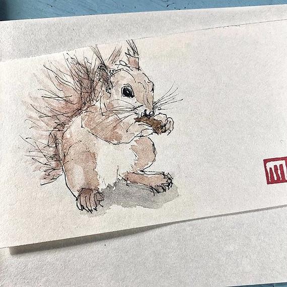 Eichhörnchen- Druck handgefertigter Skizze