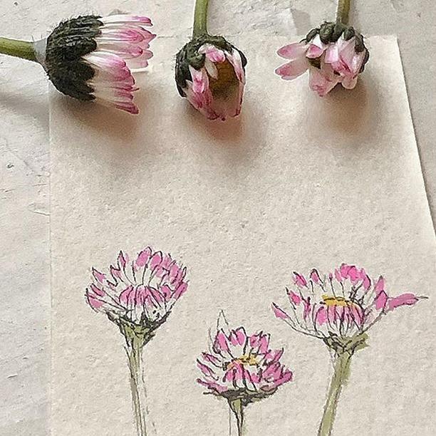 Gänseblümchen- kleiner Duck ca 4 x 4 cm