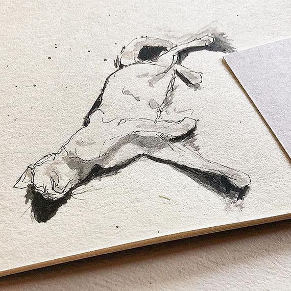nouvel ami- schlafende Katze- Leo- handgefertigte Zeichnung- Skizzenbuch