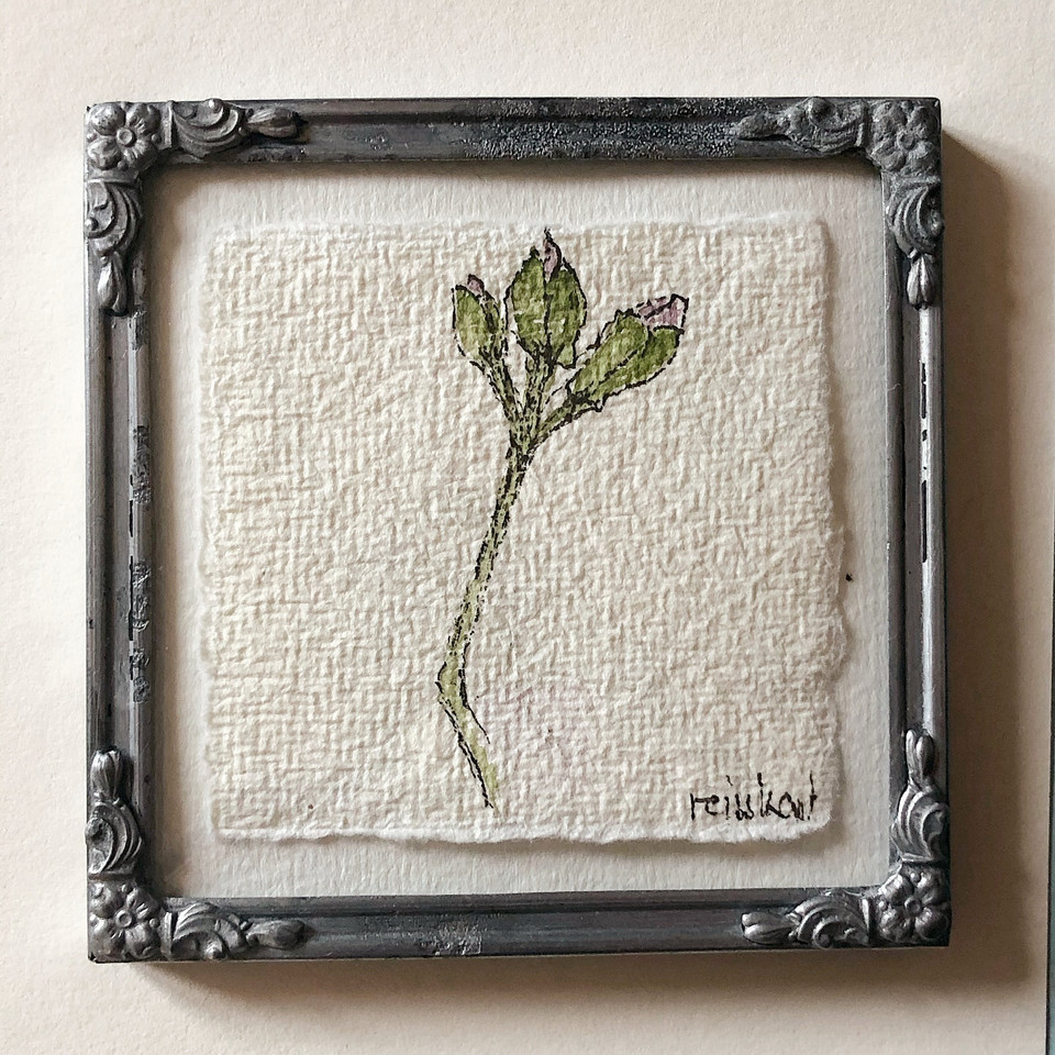 kleine aquarellierte Blütenzeichnung