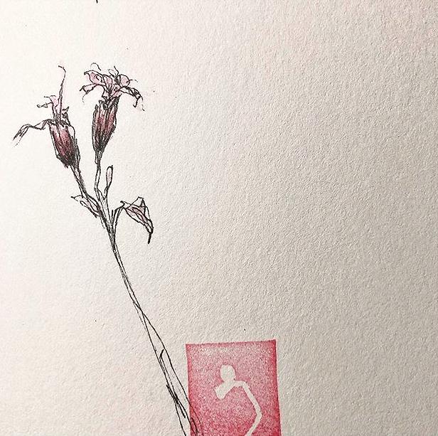 kleine Zeichnung- verblühte Kuckuckslichtnelke- handgefertigter Stempel