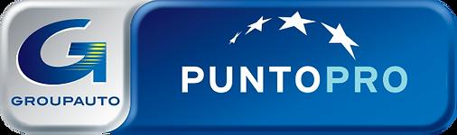 LOGO PUNTOPRO.png