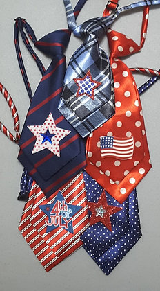 Patriotic theme embellished medium neckties (set of 5)