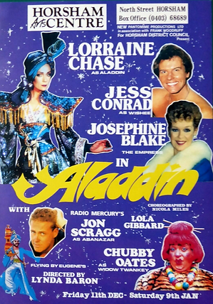 1993 Horsham Arts Centre panto.png