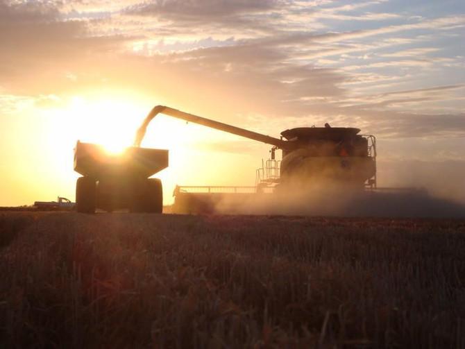 Le 5 qualità del contoterzista agricolo moderno