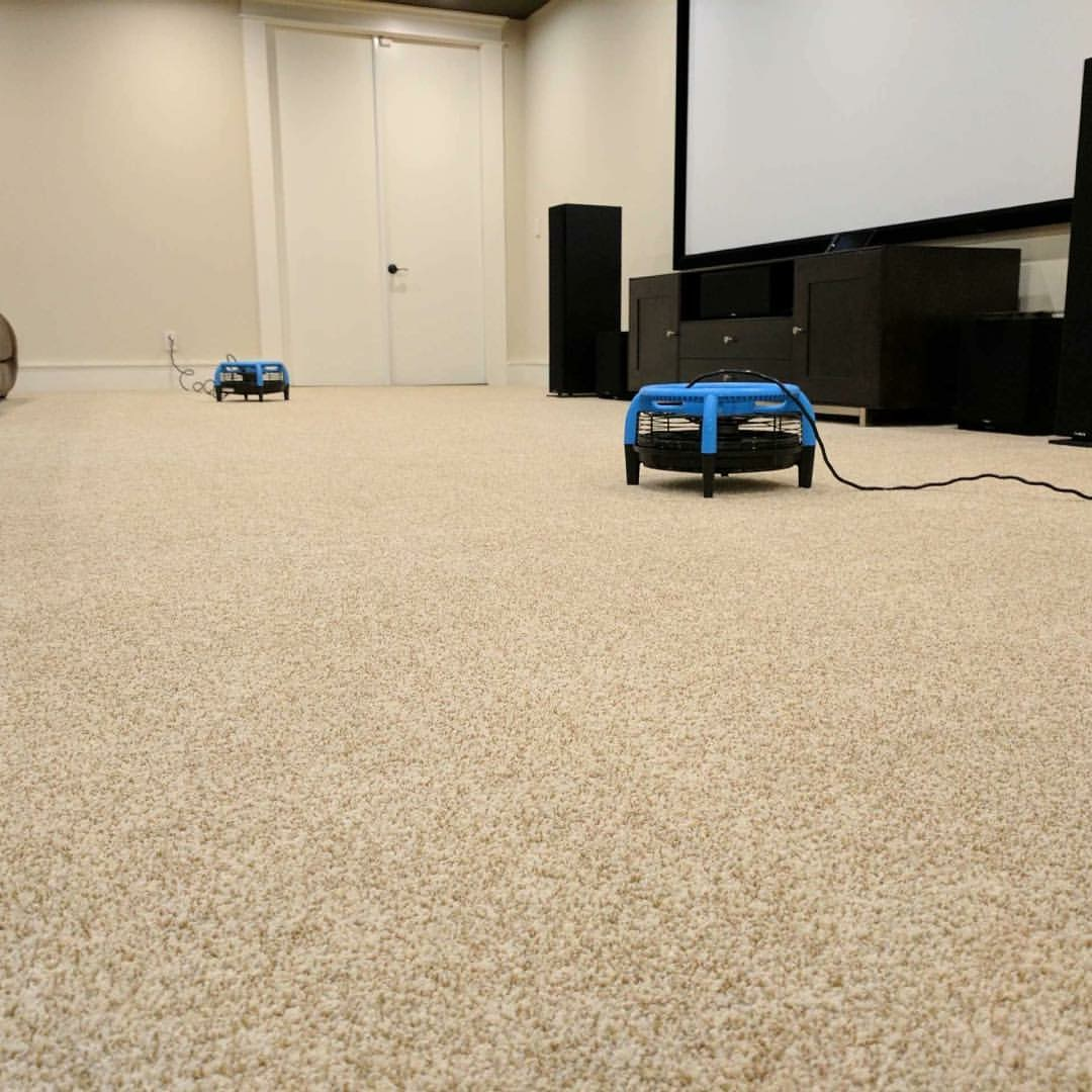 Carpet Cleaning Manhattan Ks