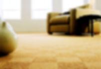 Carpet cleaner Manhattan, KS