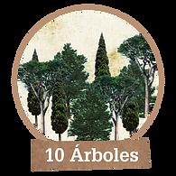 Plantar 10 árboles