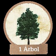 Plantar 1 árbol