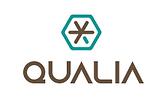 Qualia.png