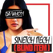 SINETCH ITECH WINDOWS TYPE.jpg