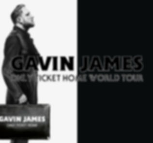 GAVIN JAMES ONLY TICKET HOME CONCERT 2K1