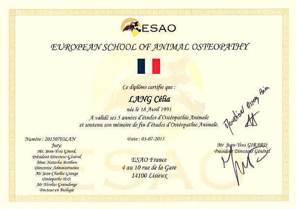 Ostéopathie animale, ostéopathie équine, ostéopathie canine, ostéopathie NACs, Alsace, Grand Est, Bas-Rhin