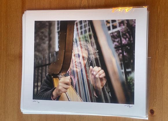 Harp - Limited Edition