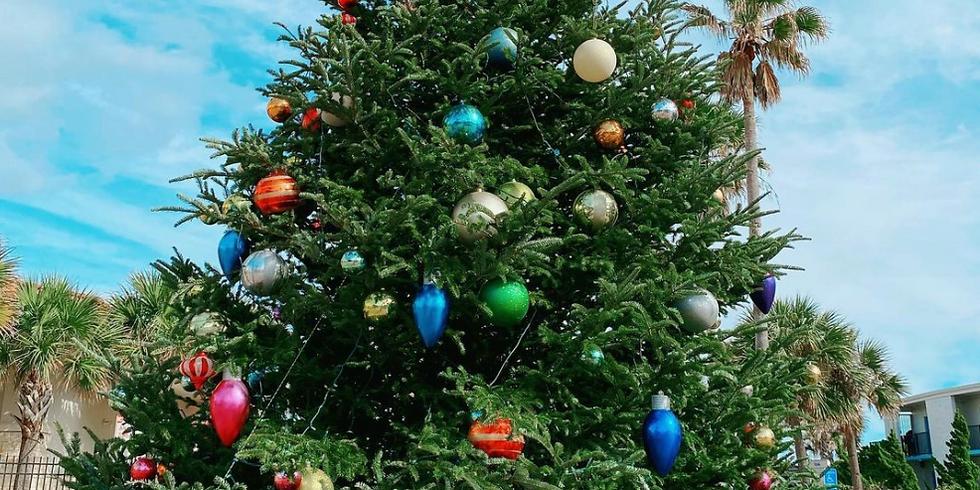 Holiday Celebration & Tree Lighting