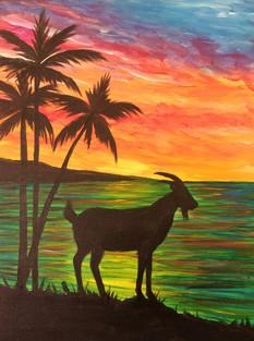Goat on the beach.