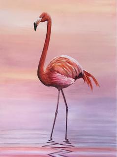 Spicy Flamingo