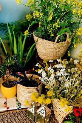 TBS_3192_flowers.jpg