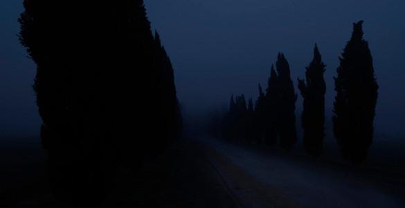 Siena Hills, Italy, 2011
