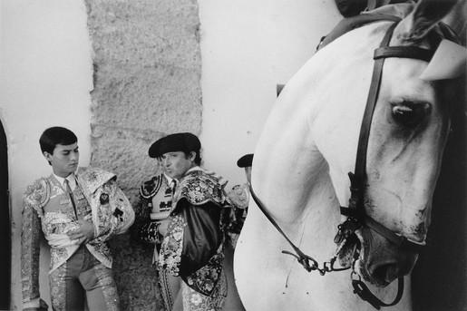 Toros en Ronda, 1981/1989