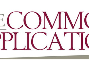 Topic-By-Topic Guide to Common App Essay