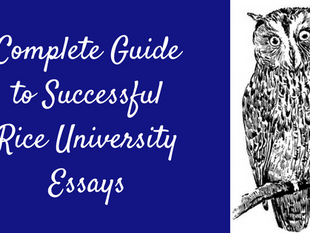 Complete Guide to Successful Rice University Essays