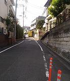 sakamichi_mini.jpg