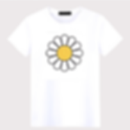 product daisy tee.png