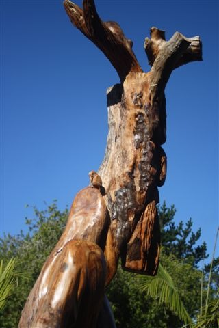Ent Side View