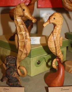 Steve & Seamus - Knysna Seahorses in Wild Olive