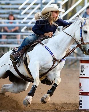 rodeo-3578528_1280.jpg