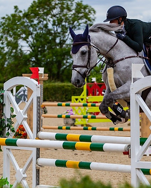 horse-jumping-4313161_1280-67d85e43.png