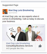Facebook advertising image by mad dog lola