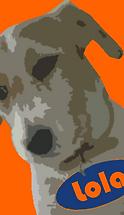 mad dog lola emarketing logo