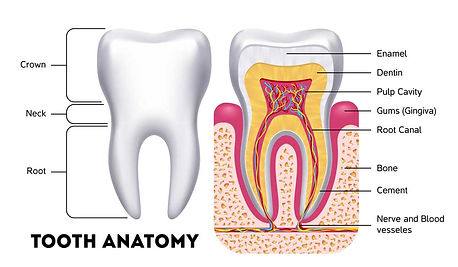 Replace Missing Teeth 2 at Dentistry with Care Mortdale