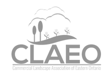 CLAEO-New-Logo-2016_edited.png