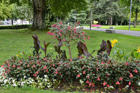 Kurpark, Baden, Switzerland