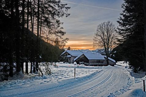 Barboleuse,Switzerland