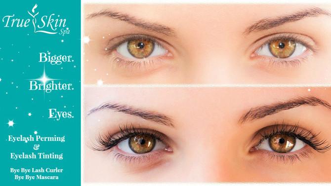 Change your game with Eyelash Tinting & Eyelash Perming