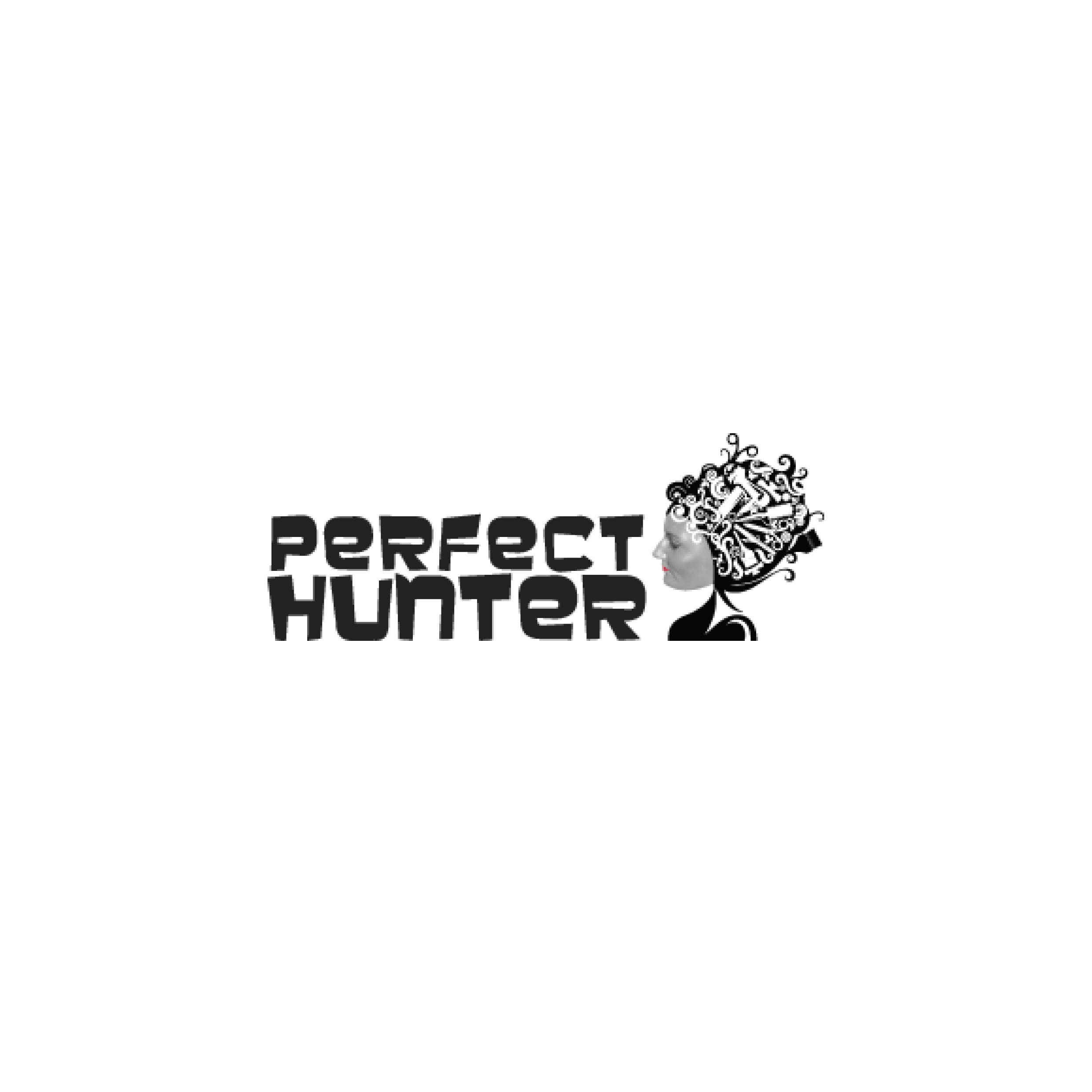 Logo Perfect Hunter