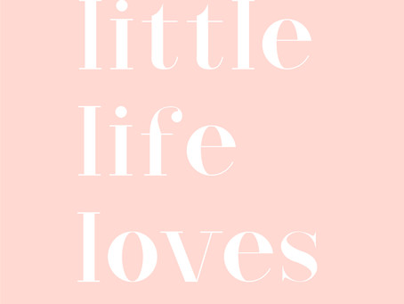 Little Life Loves - chapter 1.
