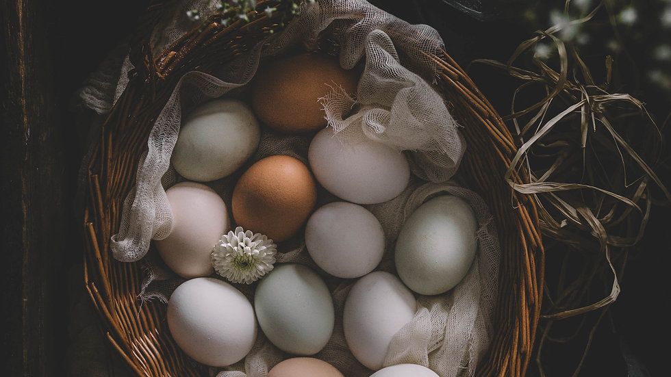 Eggs in Basket Still Life Print