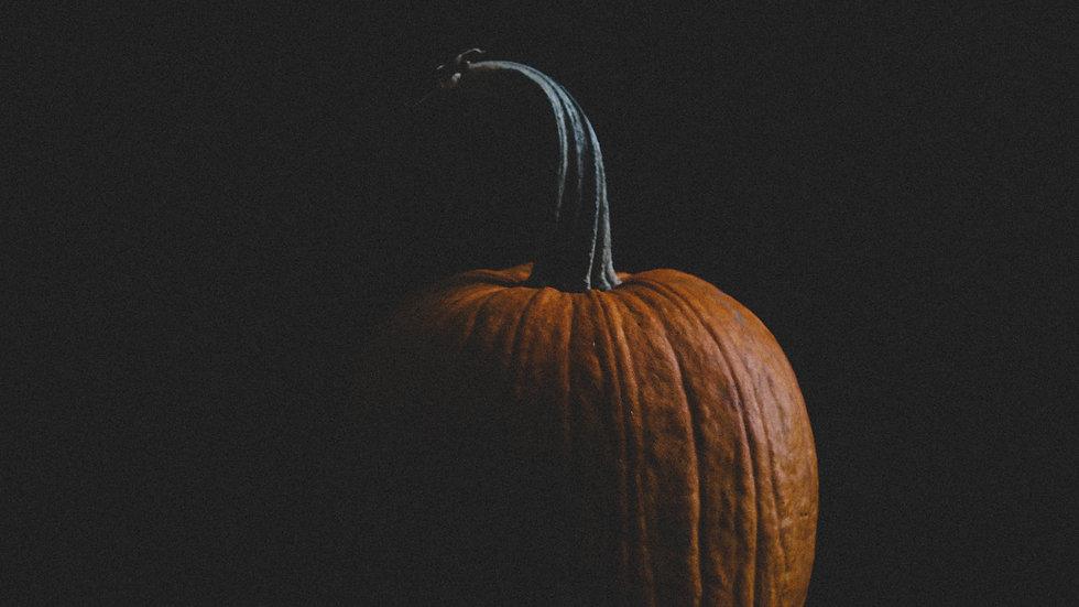 Pumpkin Still Life Print