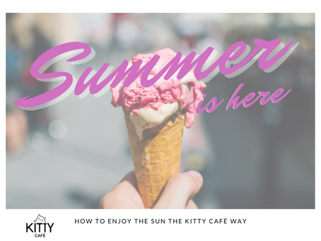 Summer is here! How to enjoy the sun the Kitty Café way!